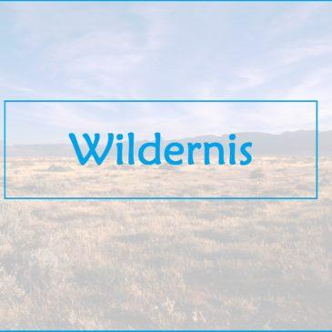 Wilderness – Willie Brits