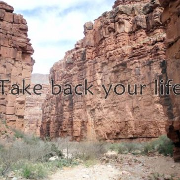 Take Back Your Life – English