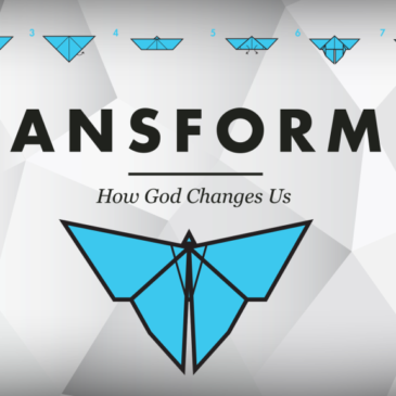 Transformed – Financial